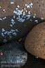 Boulders, barnacles, light and shadow