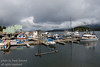 Boats in the Tofino Harbour