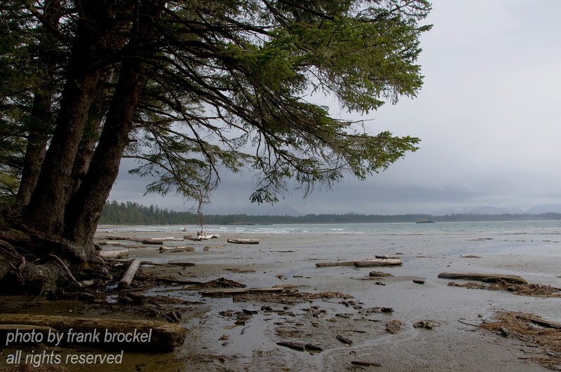 A view from Schooner Cove south towards Wickaninnish Beach