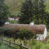 Thatched Roof on Irish Barn