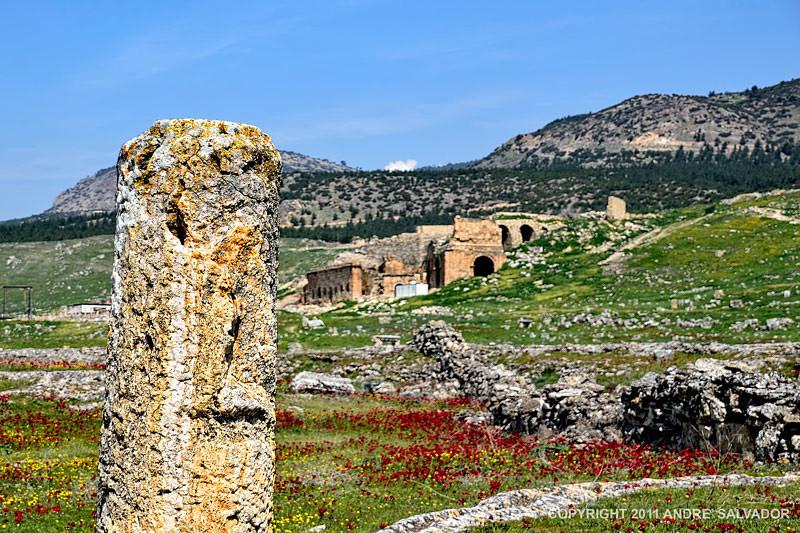 Necropolis area.