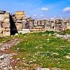 Necropolis (cemetery) area.