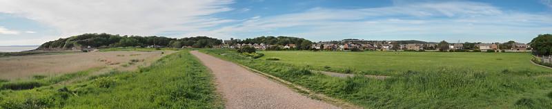 Marshall's field panorama