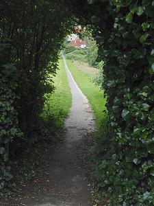 SW Coast path, Hilsborough, Ilfracombe, North Devon