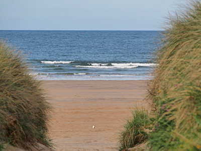 Beadnell Bay, It's through here!