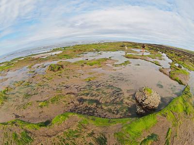 Beadnell Bay, Northumberland
