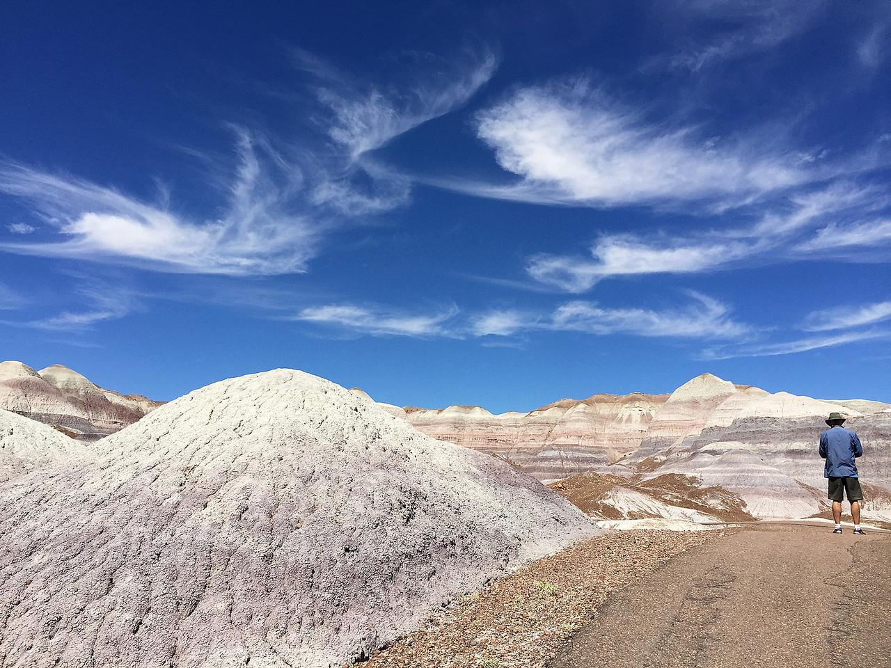 This is Teddie's photo taken as I start down the Blue Mesa Trail.