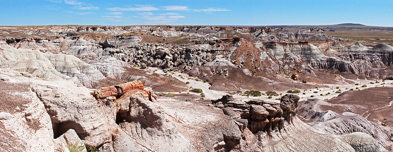 On the east side of the Blue Mesa loop, we see this valley full of petrified logs.