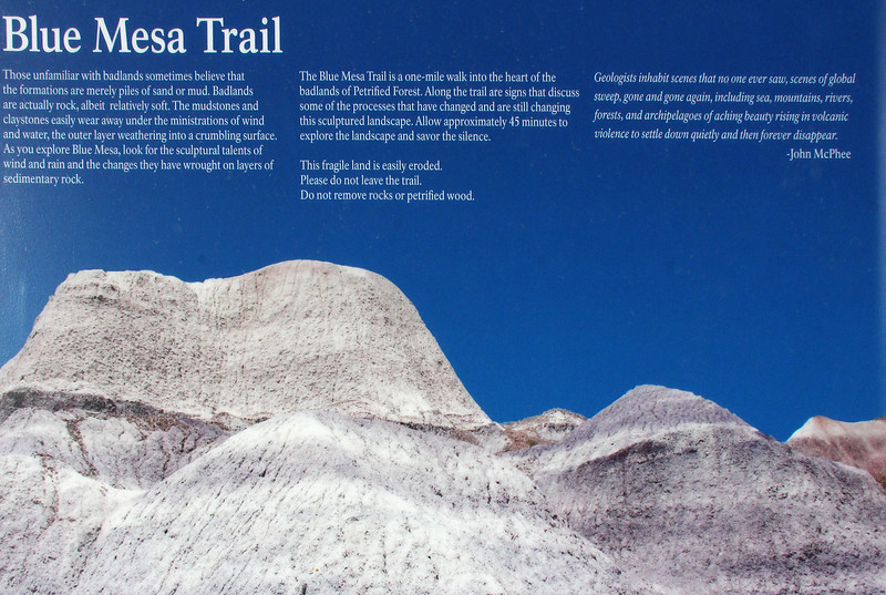 On the west side of the  Blue Mesa loop is a valley of stark erosion from which the Blue Mesa gets its name.