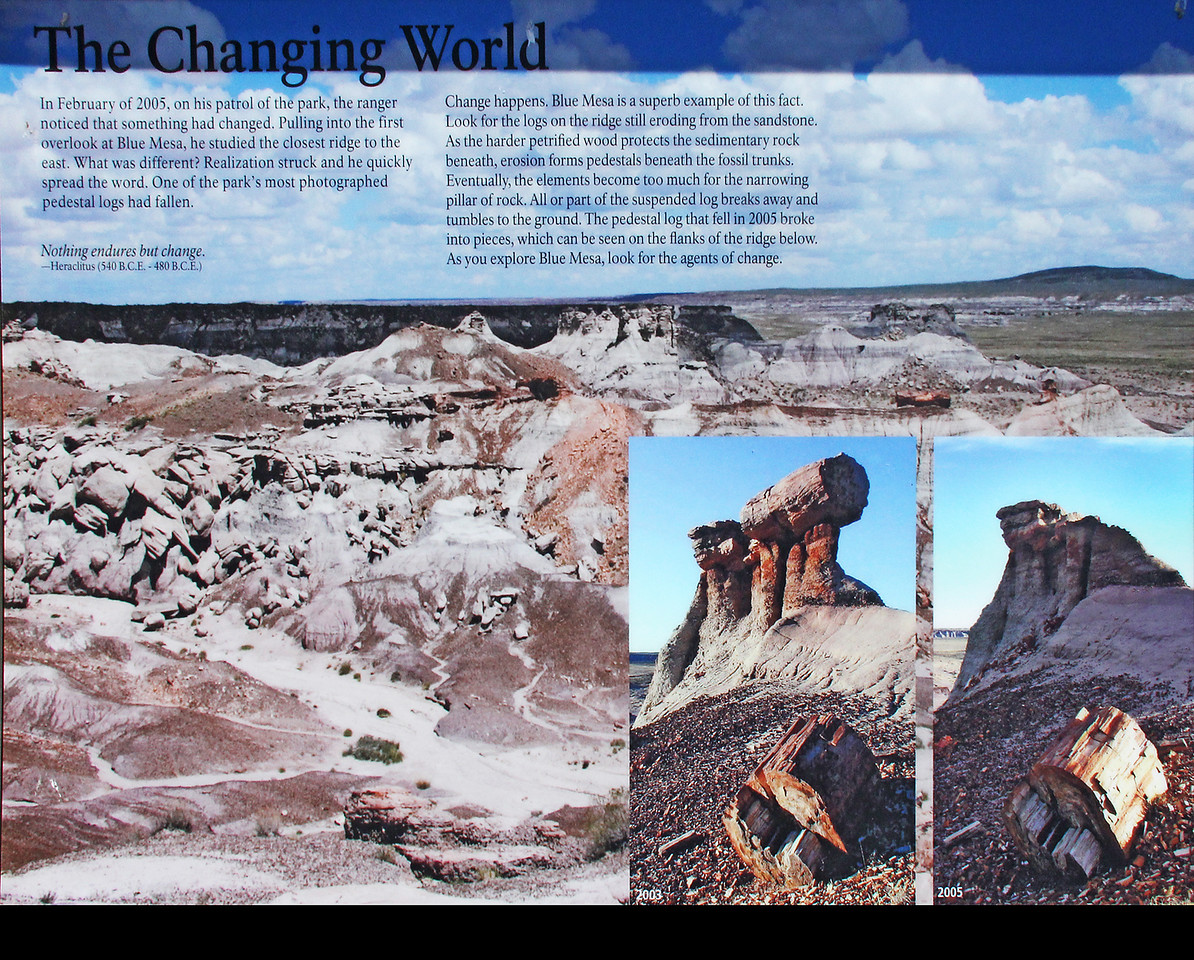 As this information sign makes clear, erosion continues and decomposition of petrified logs continue at a pretty fast pace, at least in geological time frame terms.