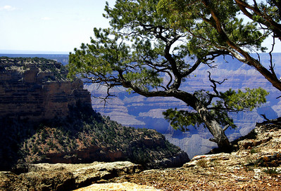 Hiking along the South Rim Trail.