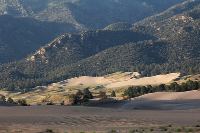 First evening's late light on the dunes.   The dynamic of dune creation is that the prevailing winds drive the sand to the base of the Sangre de Cristo mountains, and then the water flow out of the mountains moves much of the sand back to the dune field, keeping it well supplied with sand.