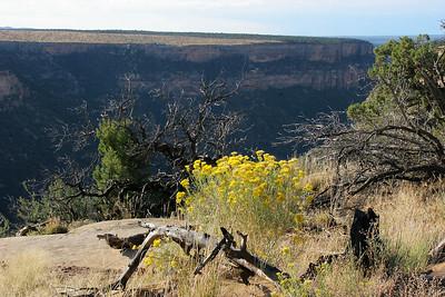 Soda Canyon Overlook.