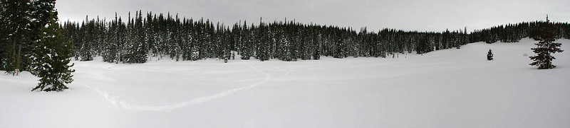 7-image panorama of the meadow on Rabbit Ears Pass.