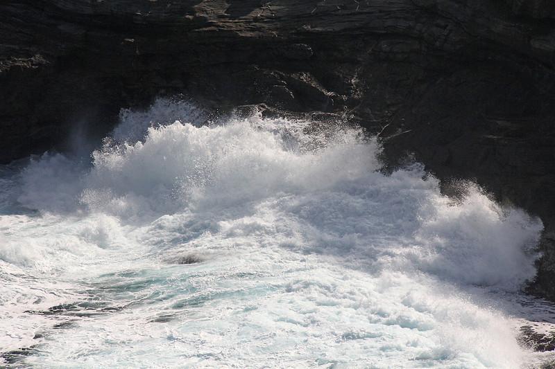 Kilauea Point;  a wave surges up over the coastal rocks, and ....