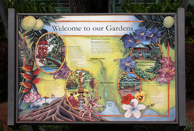 The National Tropical Botanical Garden has several sites on Kauai.  We visited the two largest sites.  The first 1/2 or more of this gallery is shots from the principal site, Allerton Garden, on the south shore.