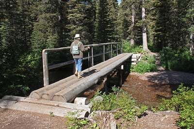 One of the bridges on the trail to Upper Two Medicine Lake.