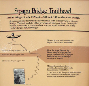 The details of the hike down to the base of Sipapu Bridge.  0.6 miles of trail, one way, and 500 feet of elevation drop.