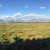 """<span style=""""color:yellow;""""> An iPhone panorama taken from the Willow Flats Overlook.  </span>"""