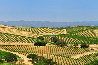 Napa Valley Winery 2