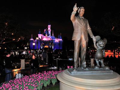 Disneyland Iconics