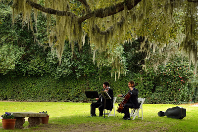 Middleton Plantation, Musicians