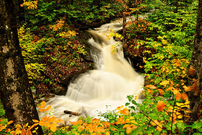 Raging Stream in Autumn