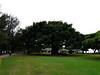 Queen Kapiolani Park