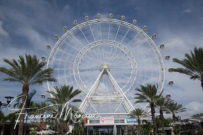 Orlando (765 of 1143)