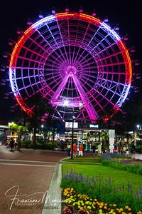 Orlando (793 of 1143)