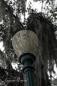 Orlando (363 of 1143)