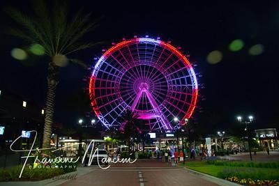 Orlando (783 of 1143)