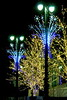 Detroit cmas lights2015_014