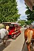 Carriage tour MckIs _003_F