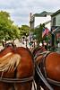 Carriage tour MckIs _001_F