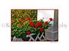 Grand Latticed Flowers_012wt
