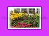 Grand Facade & Gardens_008omlav