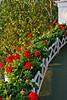 Grand Latticed Flowers_020