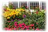 Grand Facade & Gardens_008om