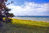 Lake Bluff LK MI_002msps_F