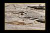 Driftwood_005blk