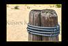 Beach pilings_002blk