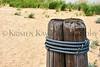 Beach pilings_002