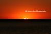 Sunsetfolks_008o