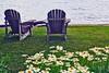 Adirondacks & Daisies kk_005