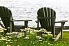 Adirondacks & Daisies kk_008