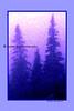 blue pines_002blpnkchalk chunkyble