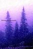 blue pines_002blpnkchalk trad
