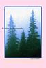 blue pines_002bwbl criscros pink