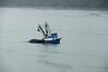 netfish Juneau_002